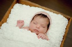 Lifestyle Newborn Photographer KW