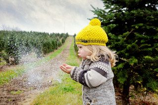 Christmas Tree Farm Sessions