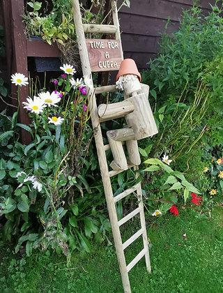 Ladder man 5ft