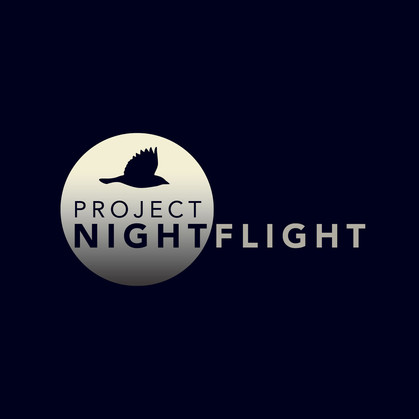 LOGO_ProjNightflight.jpg