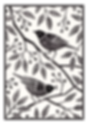 bird graphic.png