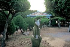 """10_<真假之間>動物系列之10  苖栗.通霄秋茂園,2001。  20""""×24"""""""