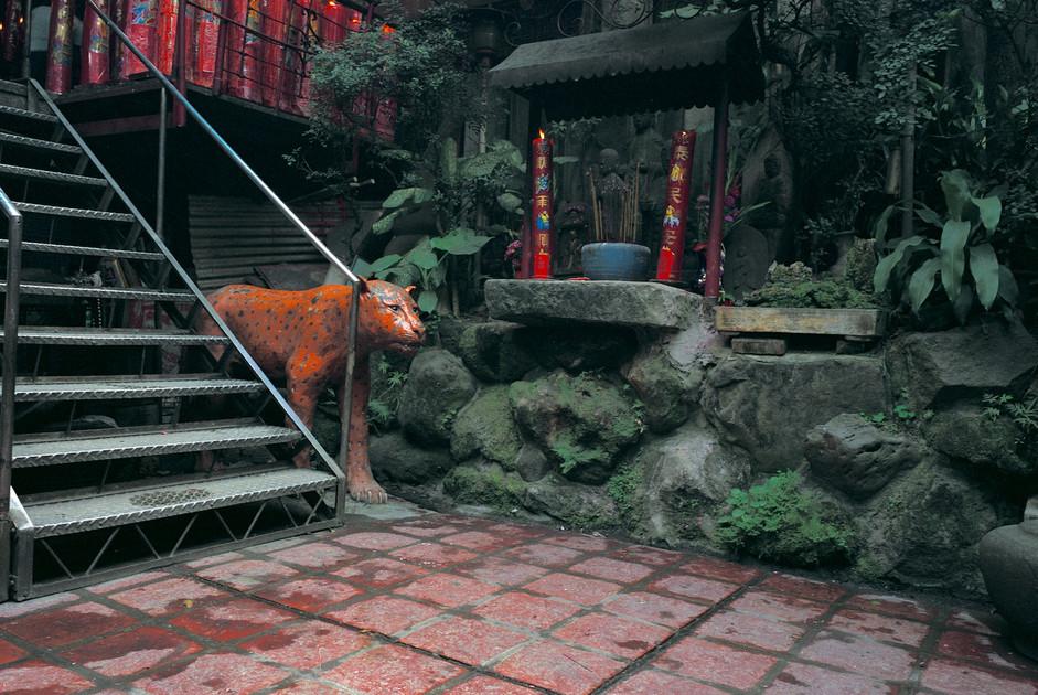 """05_<真假之間>動物系列之5  台北.西門盯城隍廟,1994。 40""""×60"""""""