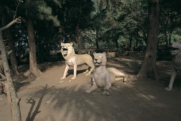 16_<真假之間>動物系列之16  台南.安平秋茂園,1994