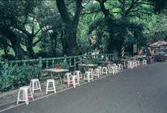 """34_<真假之間>肖像系列之4  桃園.大溪中正公園, 2000。  20""""×24"""""""