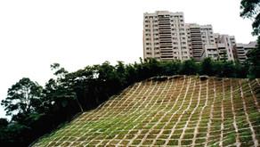 2010 真假之間─永續寶島 Formosa Forever