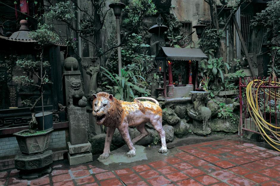 """25_<真假之間>動物系列之25  台北.西門盯城隍廟,1994。  40""""×60"""""""