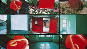 《萌芽.生發.激撞》典藏常設展,臺北市立美術館   1999