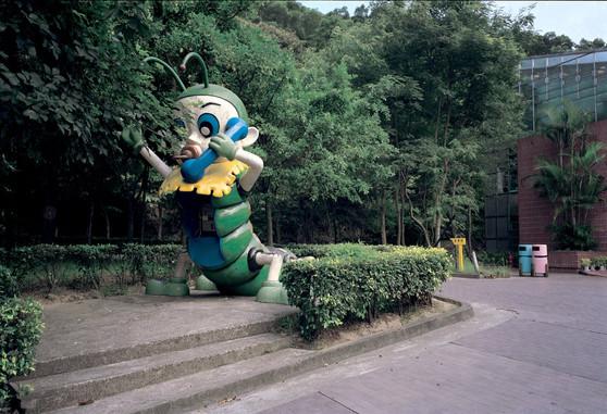 """21_<真假之間>動物系列之21  台北.市立動物園,1994。  20""""×24"""""""