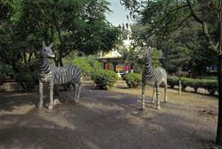 14_<真假之間>動物系列之14  台南.安平秋茂園,1994