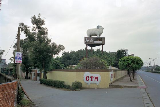 """08_<真假之間>動物系列之8  台北縣.新莊,1994。 20""""×24"""""""