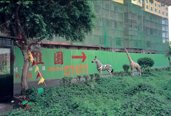 """17_<真假之間>動物系列之17  台北縣.新莊,1994。  20""""×24"""""""