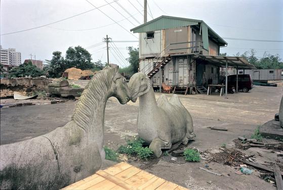 """29_<真假之間>動物系列之29  台北縣.汐止,1998。  40""""×60"""""""