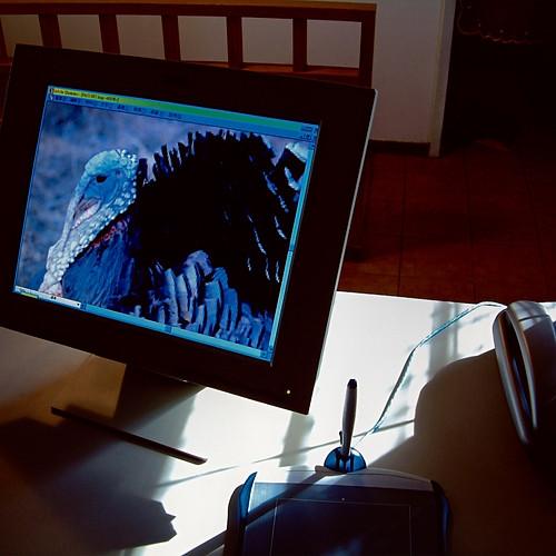 《磁性書寫II磁性書寫II─光隙掠影/影像在凝視我們》