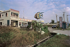 """26_<真假之間>動物系列之26  屏東縣.車城,1994。  40""""×60"""""""