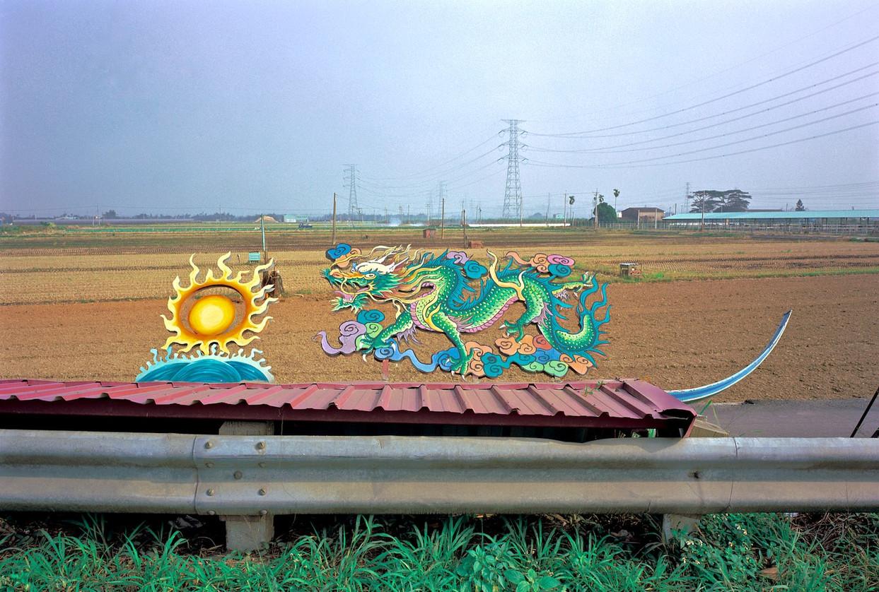 """06_<真假之間>動物系列之6   彰化縣.溪洲,1999。 20""""×24"""""""