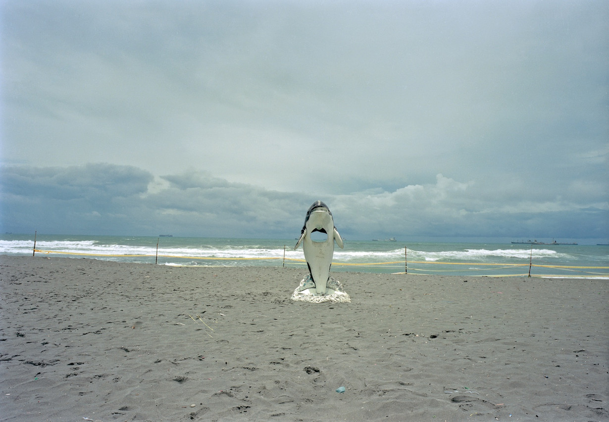 """13_<真假之間>動物系列之13  高雄.旗津海水浴場,1996。  40""""×60"""""""