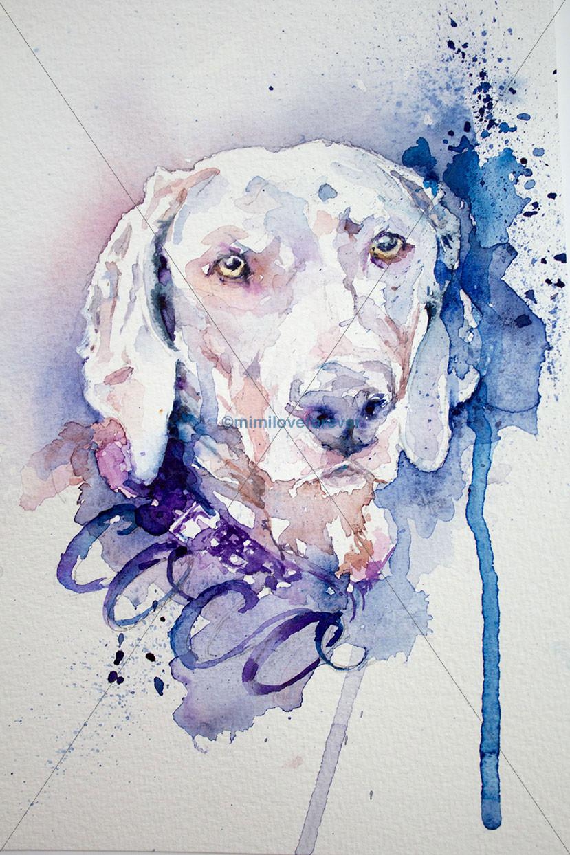Watercolour dog portrait. Mimiloveforever