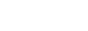 LillisGroup-Logo_white.png