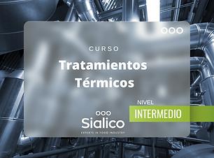 CURSO TT intermedio.png