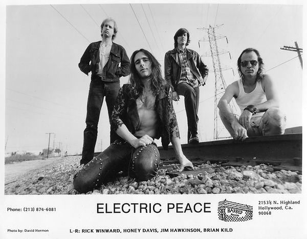 ElectricPeace_Publicity Photo - DavidHer