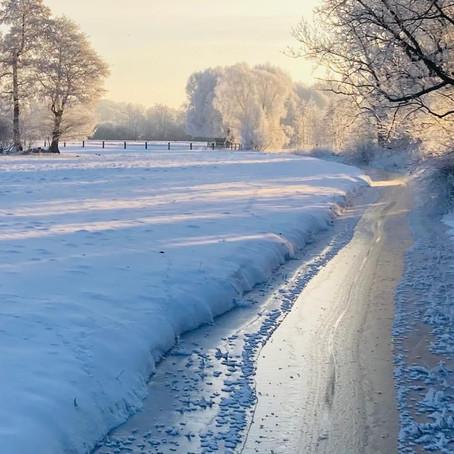 Wenn es Winter wird!