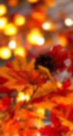 Fall Lights.jpg