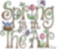 springair.jpg