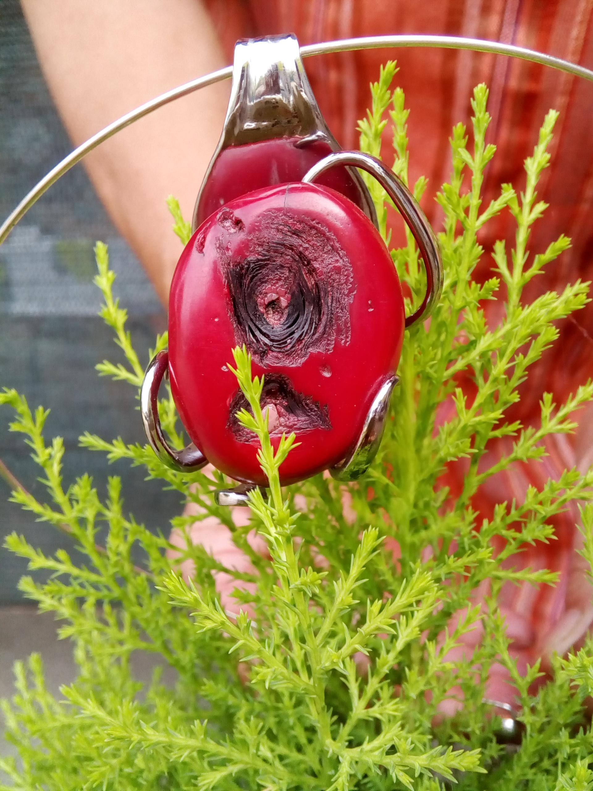 Corail rouge (Pacifique)