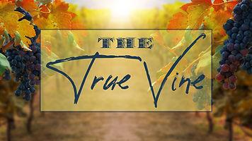 The-True-Vine--web.jpg