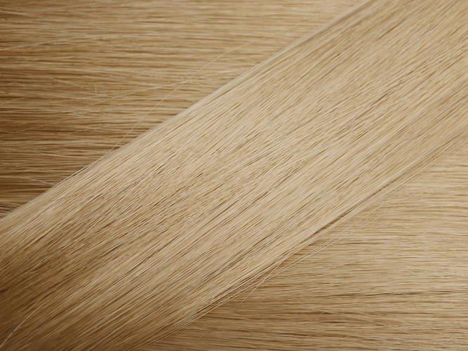 Light Blonde Hair Sample