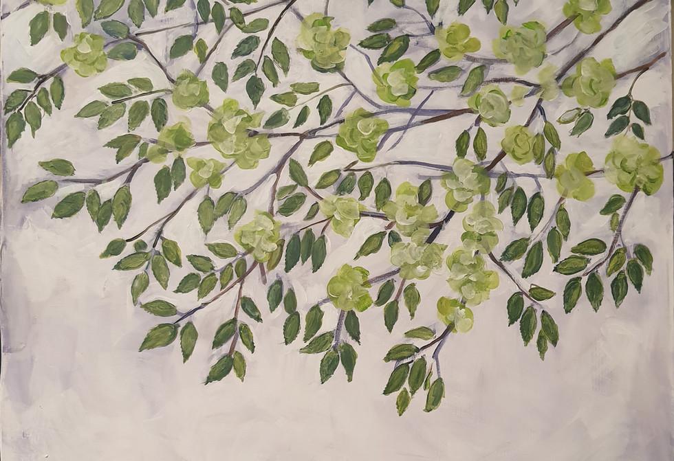 Elm Tree 100x120cm