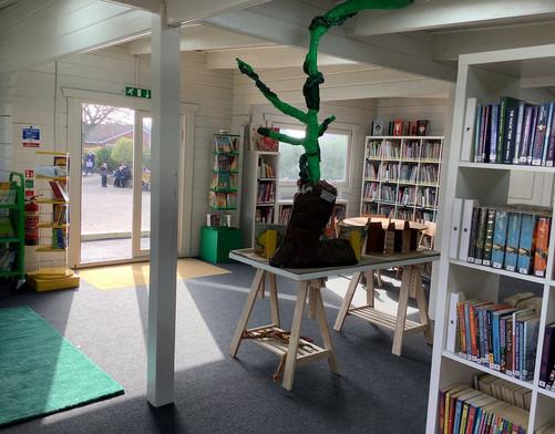 Library 6.jpeg