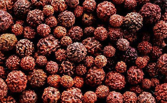 Do-not-even-wear-rudraksha-during-these-
