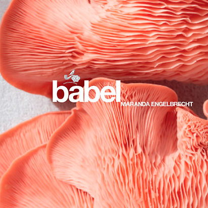 Babel for Babylonstoren Book design and layout