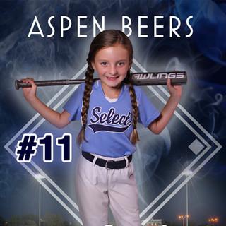 Aspen Beers 5x7.jpg
