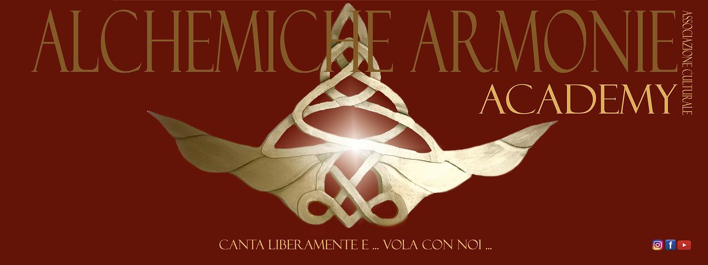 logo_aa_academy_ALI.jpg