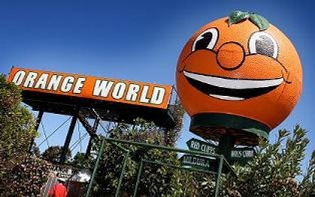 Orange-World.jpg