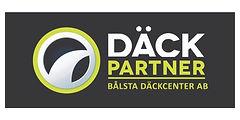 Dackpart. 10x5.jpg
