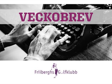 VECKOINFORMATION  |  V38