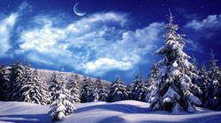 iarna.jpg