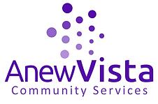 ANV CS Logo V-png.png