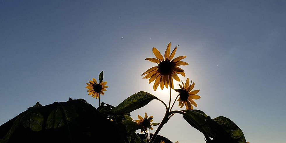 Looking For God in the Garden Weekend Retreat