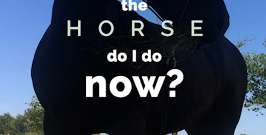 What The Horse Do I Do Now? To purchase click link at the top of the page