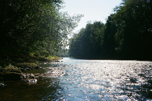 Humptulips River, WA
