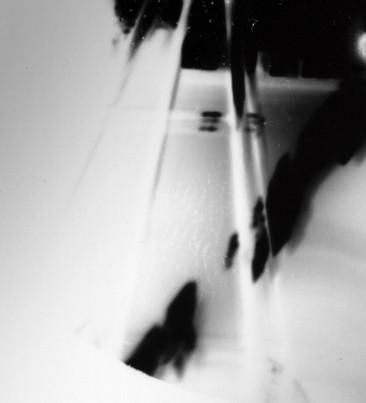 Obscured Light #8