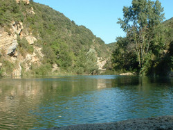 Moulin de Ribaute