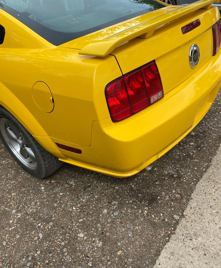 Mustang Rear