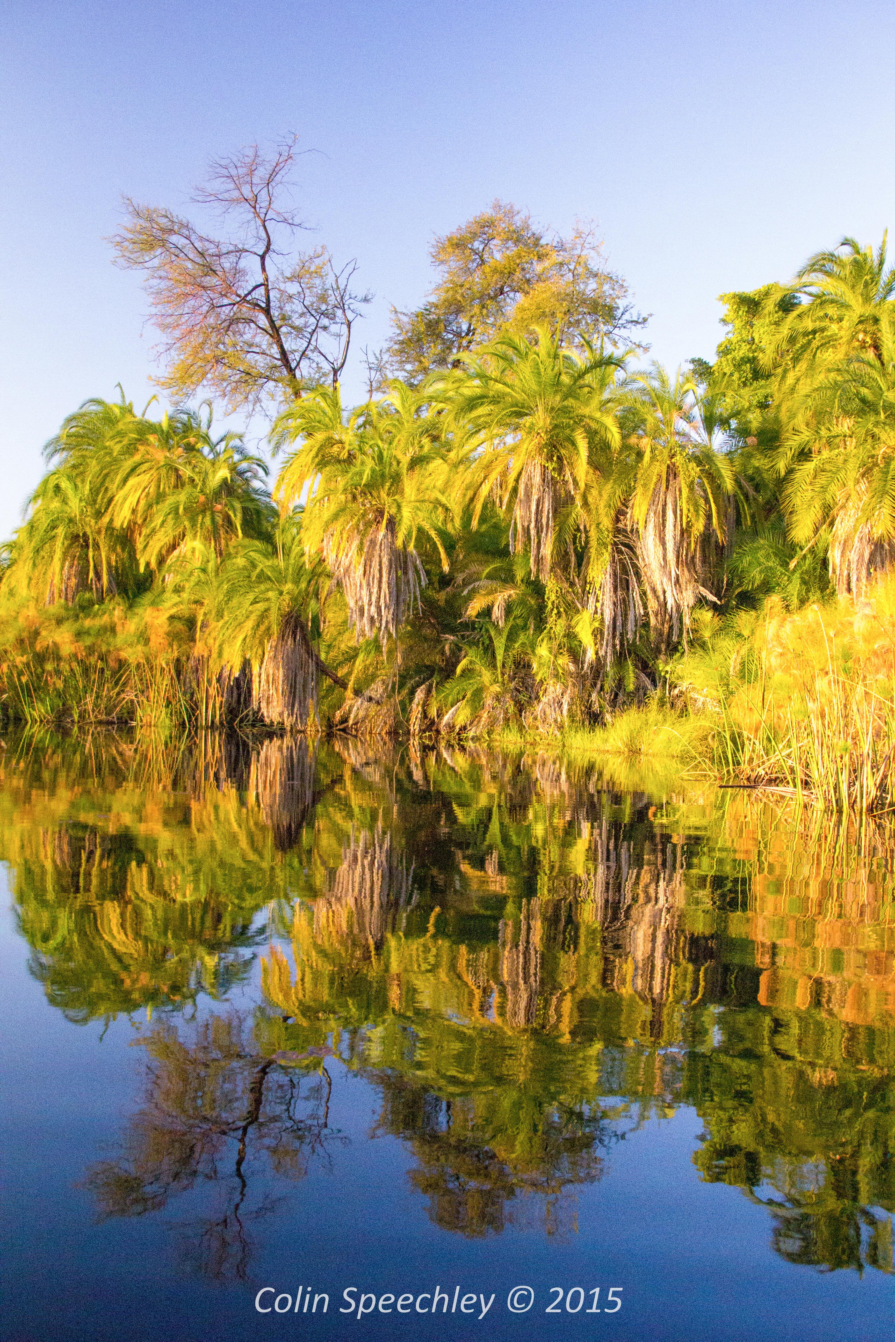 Colin Speechley Okavango Delta