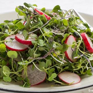micro-green-salad-everydaydishes_com-H-7